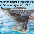 Lippisch DM-1 - Broń Arsenal 102