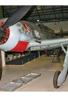 Focke-Wulf Fw 190S - Jalutada