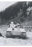 Tiger - Albumin valokuvat vol2