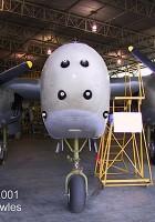 Α-20 Havoc - Περιήγηση