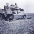 Destroyed and battle damaged AFV - Photos