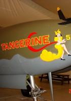 Н-38 Л мандарин - мобилни