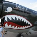Curtiss P-40 Warhawk - Omrknout