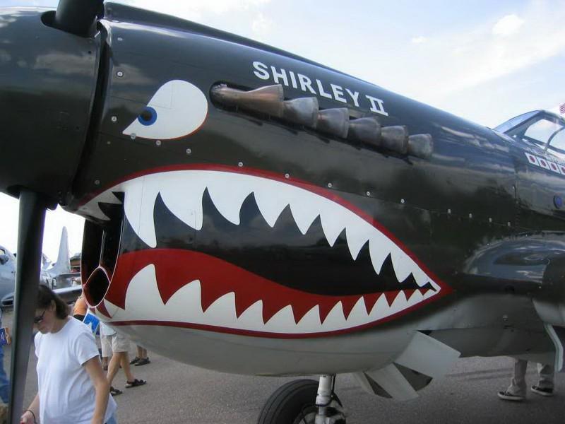 Curtiss P-40 Warhawk - WalkAround