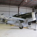 P-47 Thunderbolt - WalkAround