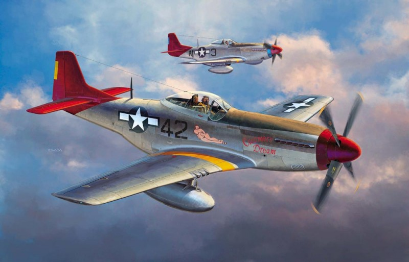 P51D Mustang Tuskegee Airmen Limited Edition - Hasegawa 08225