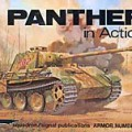 Panther in Action - сигнал на ескадрила SS2011
