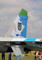 Sukhoi Su-27 - WalkAround