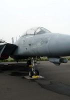 Grumman F-14养了只公猫-检查一下