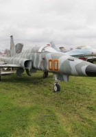 Northrop F-5E Tiger II Walk Around