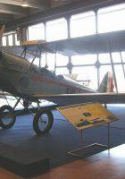 Caproni Ca.100 - WalkAround