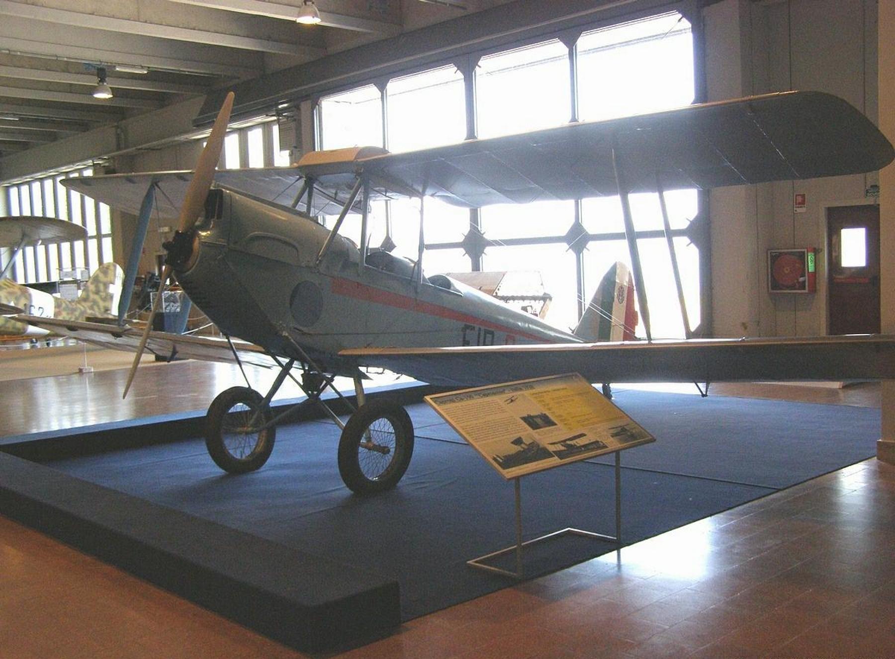 Caproni Ca.100