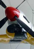 Hawker Tempest V - WalkAround