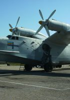 Beriev Be-12 - WalkAround