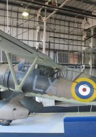Westland Lysander - Walk Around