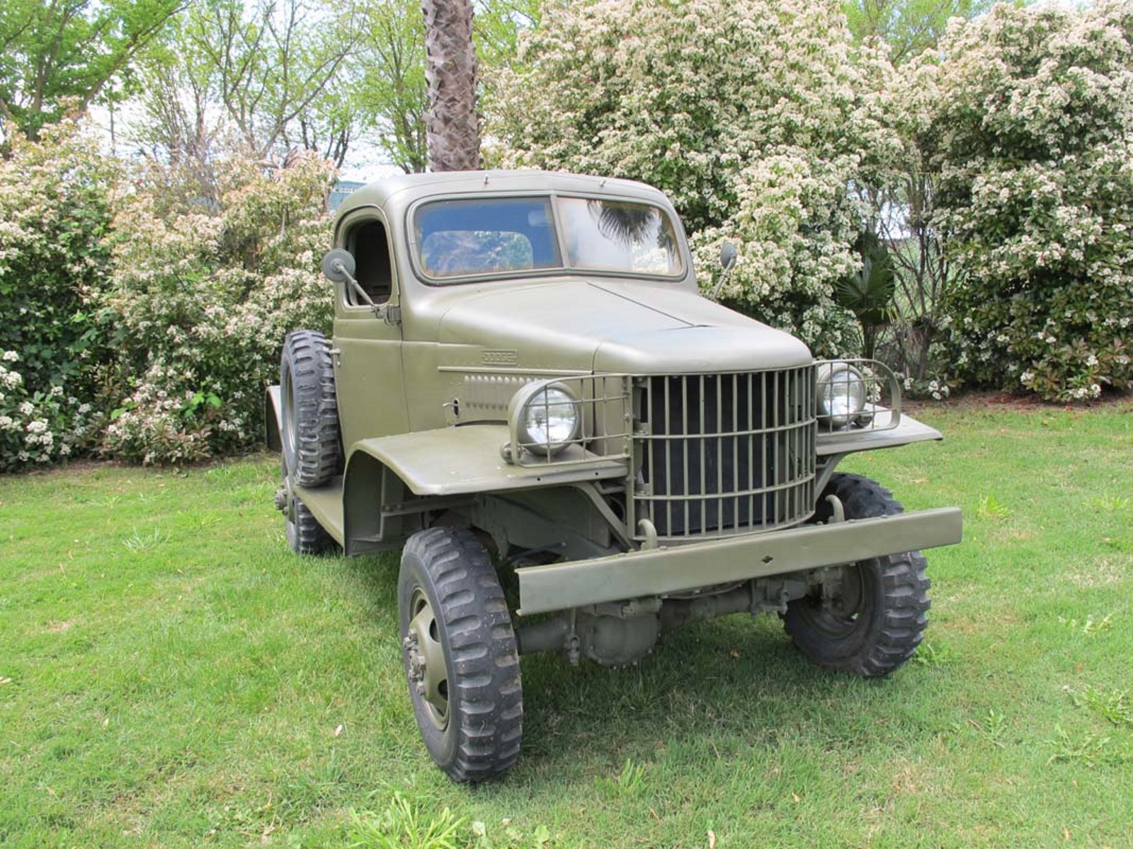 Dodge WC14