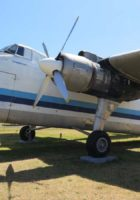 Bristol Freighter - Walk Around