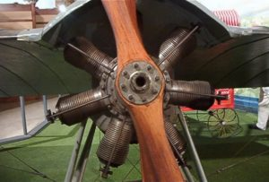 Deperdussin 1910 monoplane - Walk Around